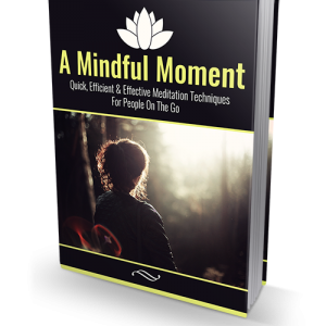 Mindful Moment Law of Attraction