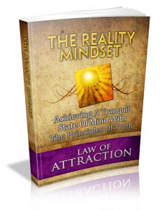Reality Mindset