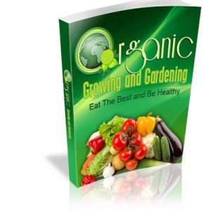 Growing Your Own Organic Foods