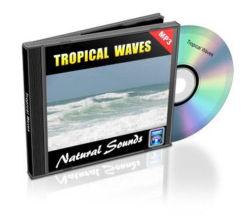 Tropical Waves Peace Meditation